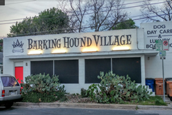 doggy daycare and boarding in austin texas